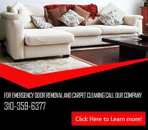 Upholstery Cleaner | Carpet Cleaning Santa Monica, CA